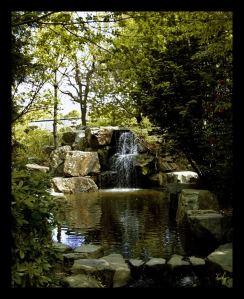 Cascade-Zen[1]