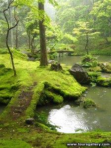h4_Moss_garden2[1]
