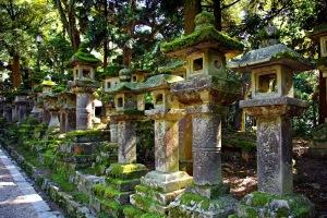 Kasuga_Taisha_Shinto_Shrine[1]