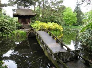 Shinto-Shrine-Tatton-Park_18[1]