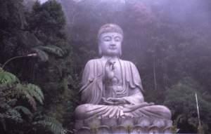 BUDDHA[2]