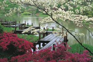 japanesegarden_jjennings[1]