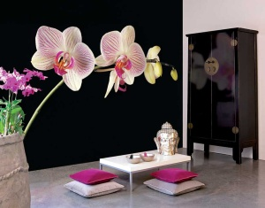 modern-oriental-interior-design-living-area[1]
