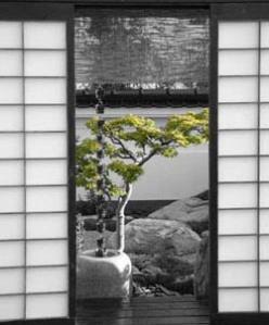 shoji-screen-doorsbwsmall[1]