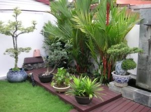 Small-indoor-paradise-garden-design[1]