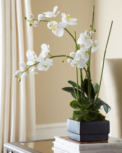 white-orchid-flower-arrangements-7914[1]