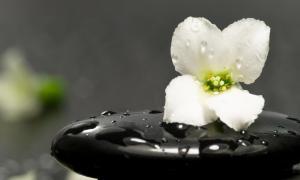 zen-nature-nice-photography-landscape-hd-travel-123886[1]