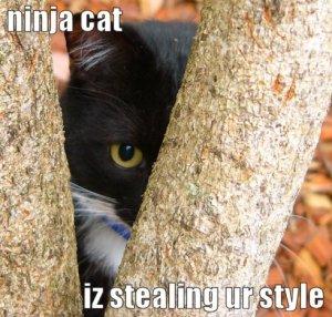 lolcat-ninja-cat[1]
